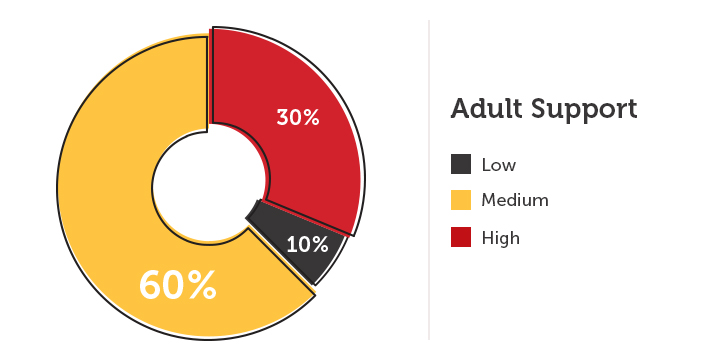 Adult Support Chart